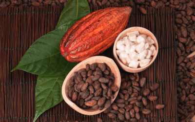 How can cocoa help us take care of our health?