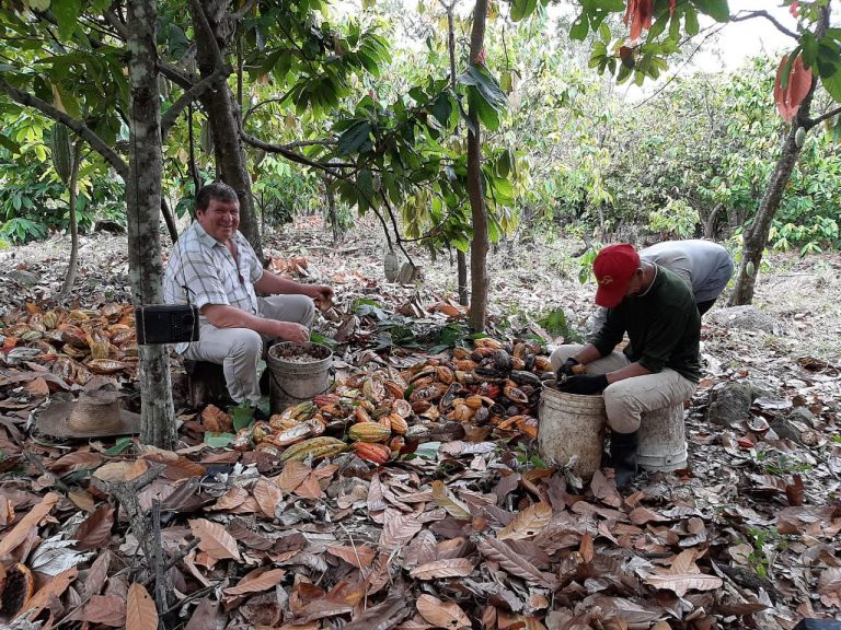 producers of cocoa Colombia