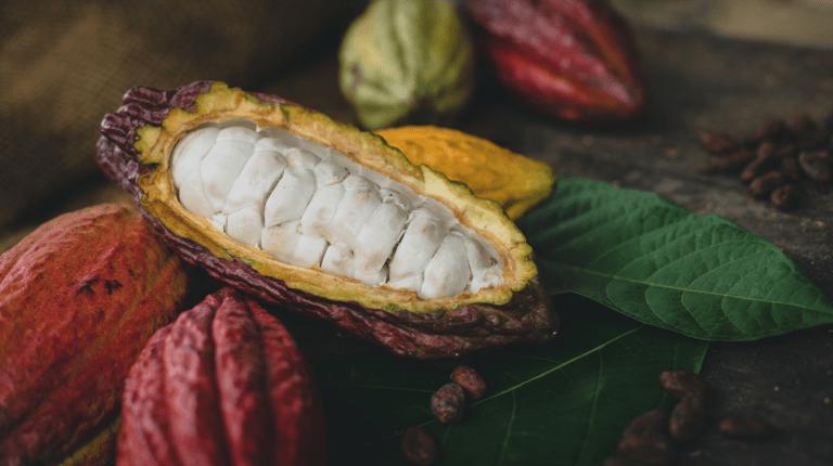 What does colombian origin chocolate taste like?